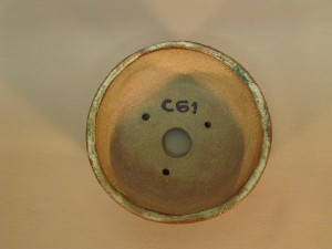 C061s